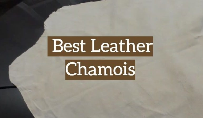 5 Best Leather Chamois
