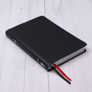 NIV, Thinline Bible, Large Print