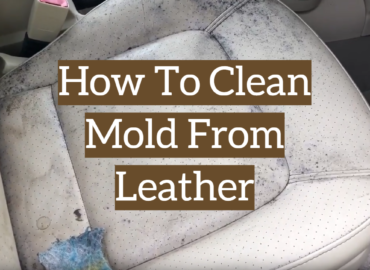 How To Clean Mold From Leather