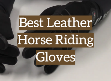Best Leather Horse Riding Gloves