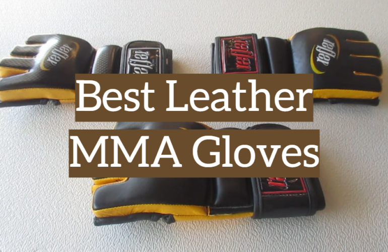 5 Best Leather MMA Gloves